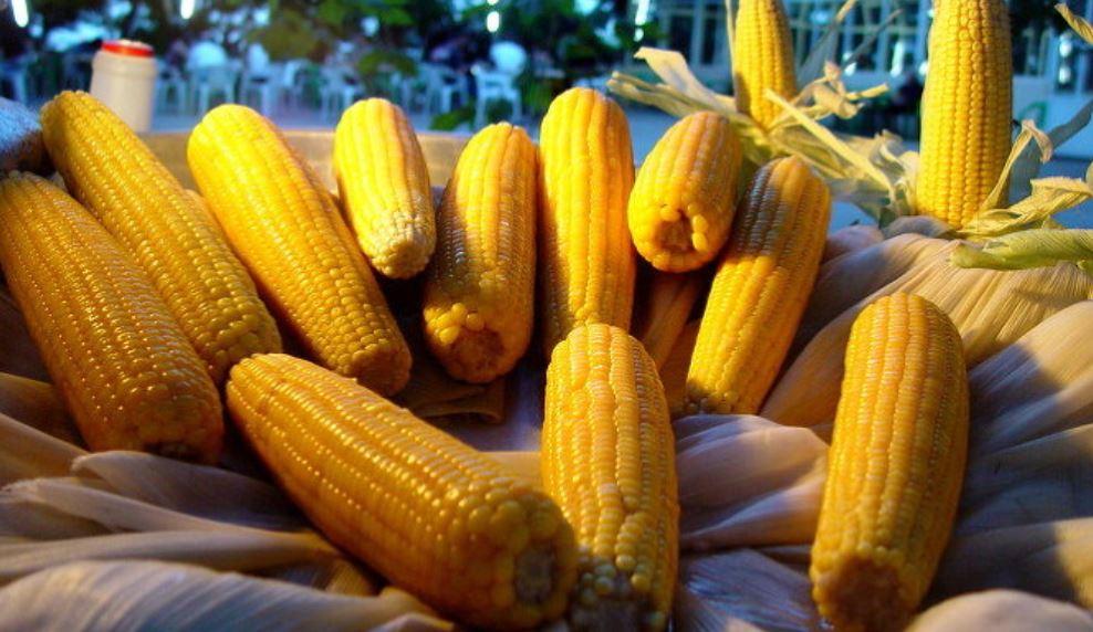 Drömtydning majs: Drömmar Betydelse, Symboler