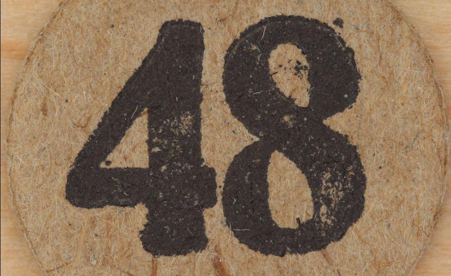 Numerologi 48