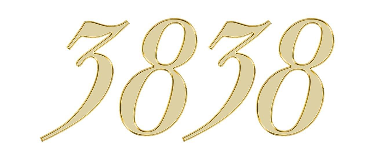 Numerologi 3838