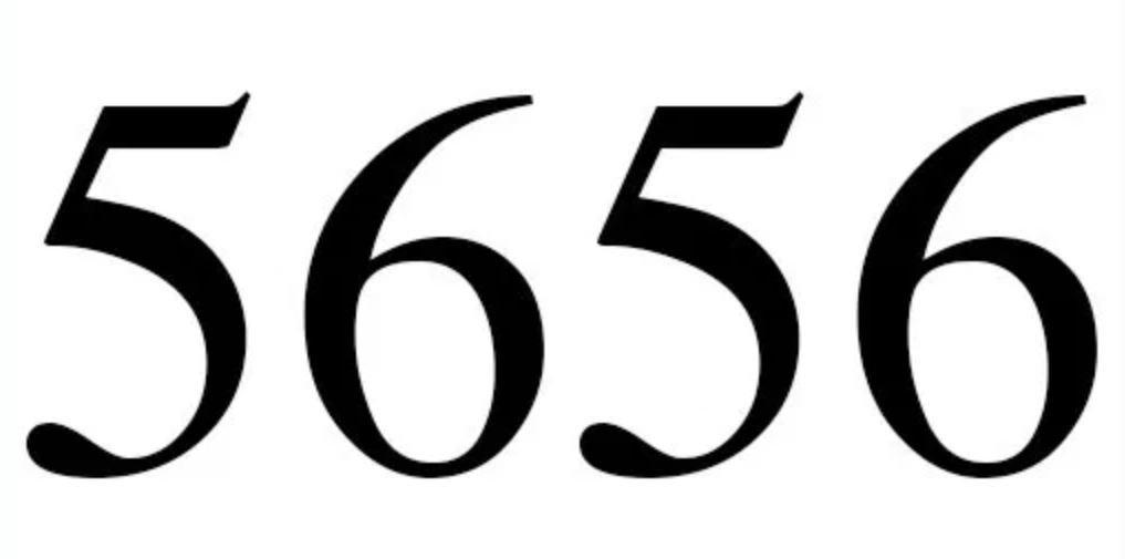 Numerologi 5656