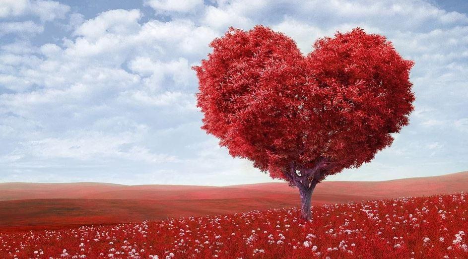 Väduren Kärlek