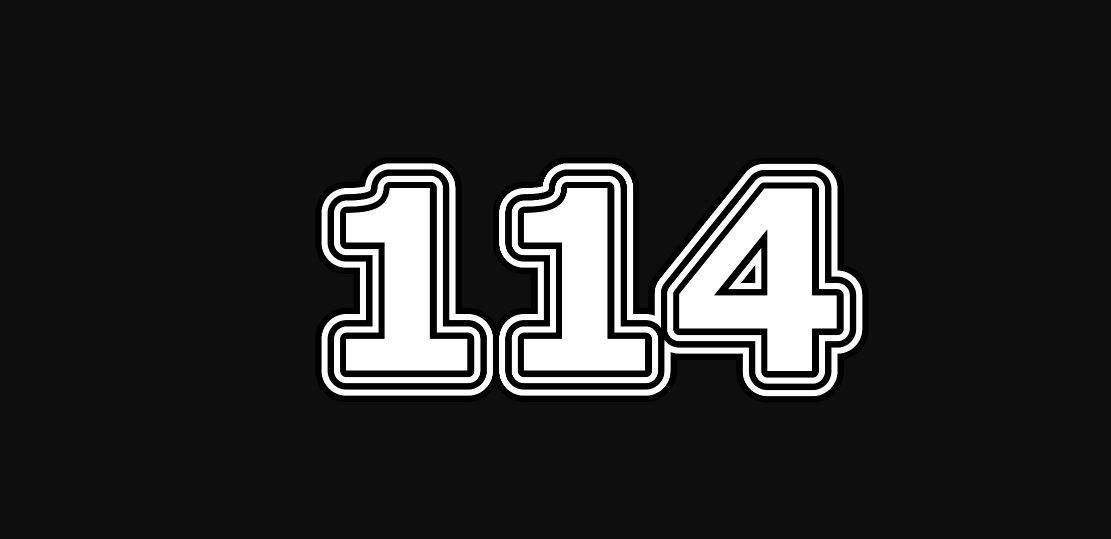 Numerologi 114