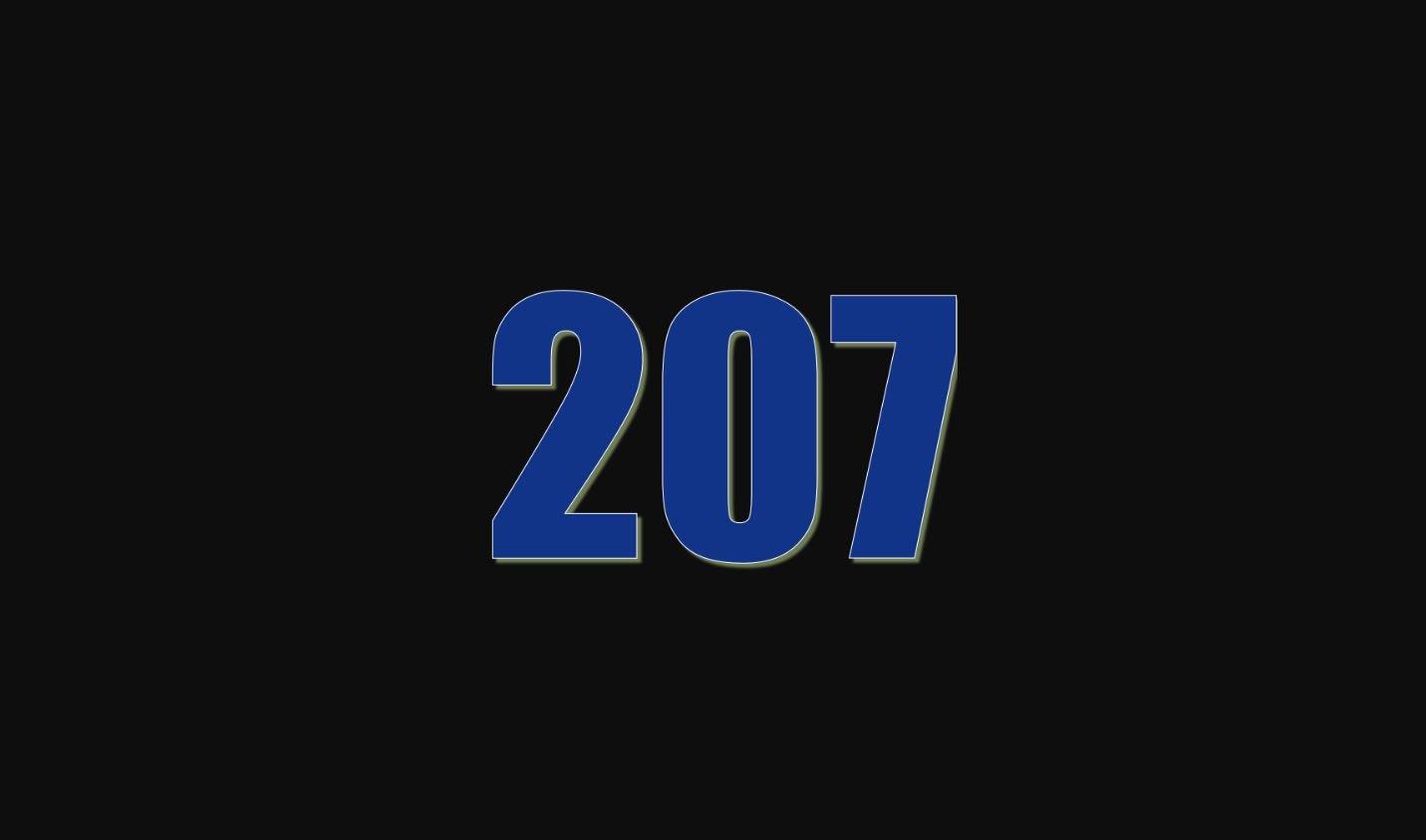 Numerologi 207