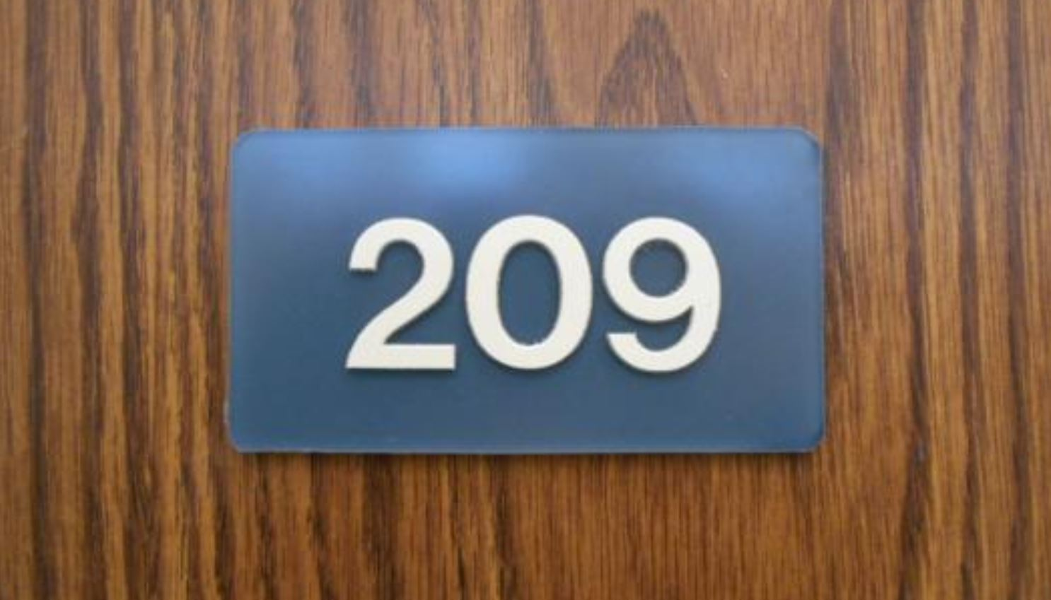 Numerologi 209