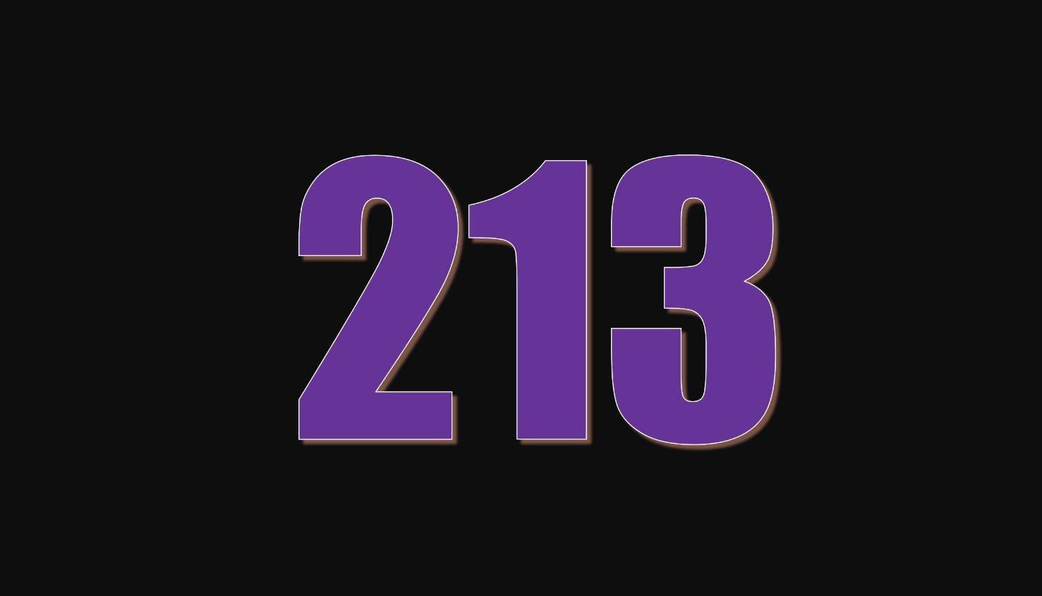 Numerologi 213