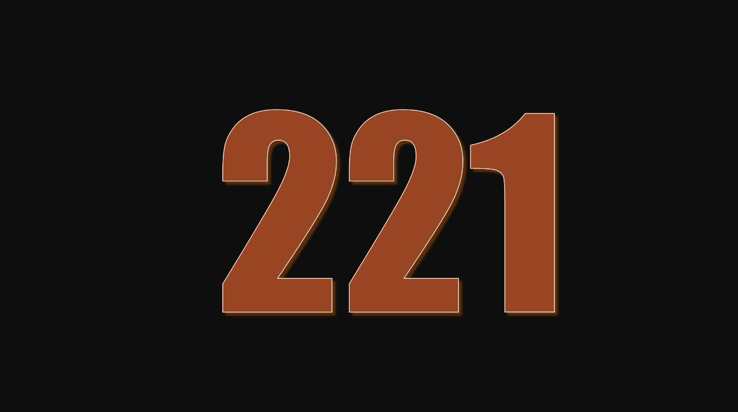 Numerologi 221