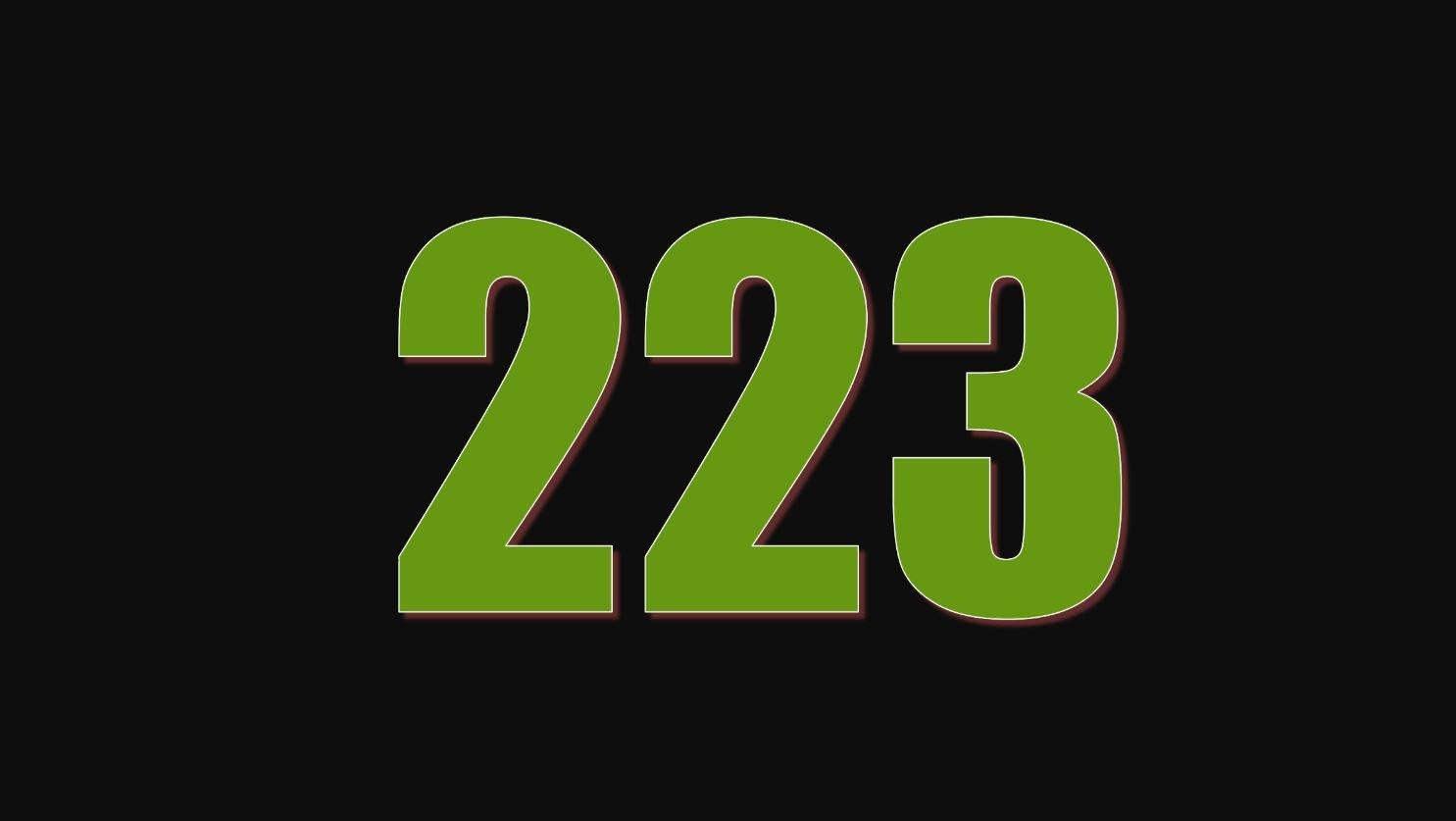 Numerologi 223