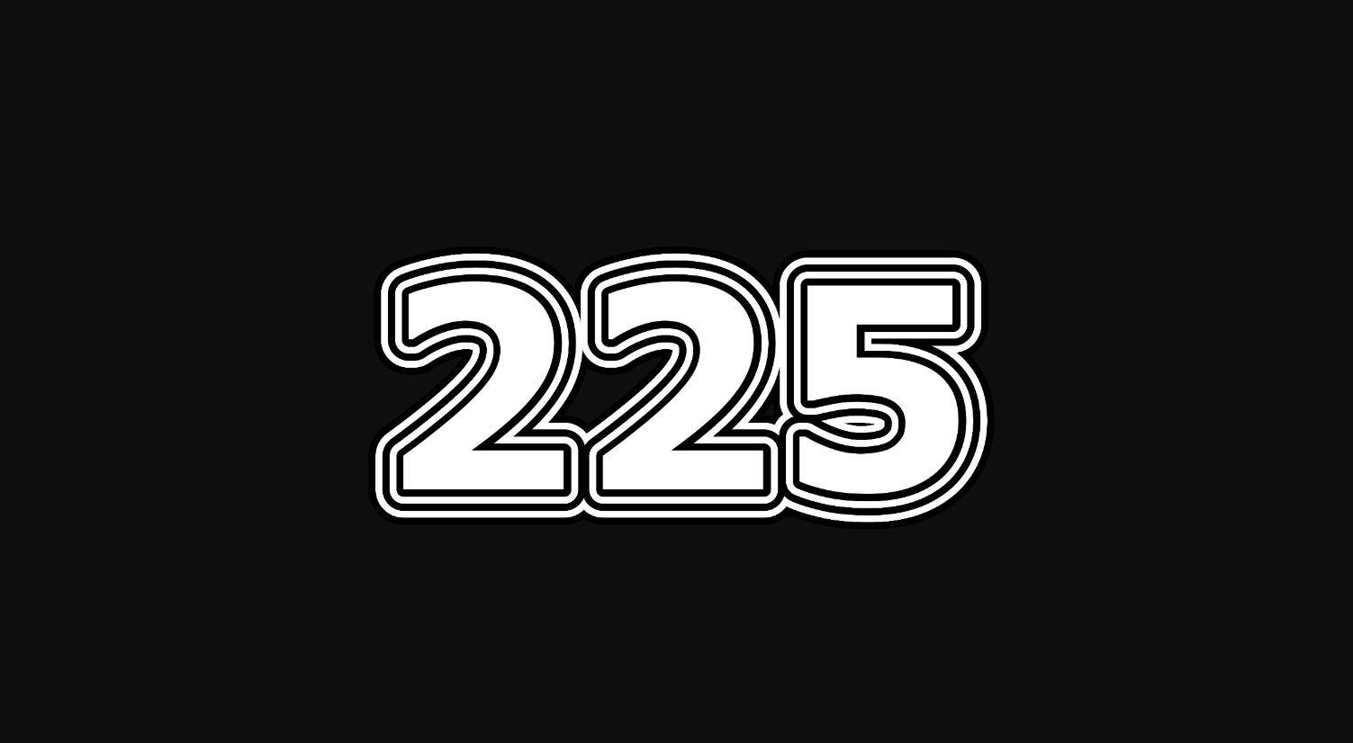 Numerologi 225
