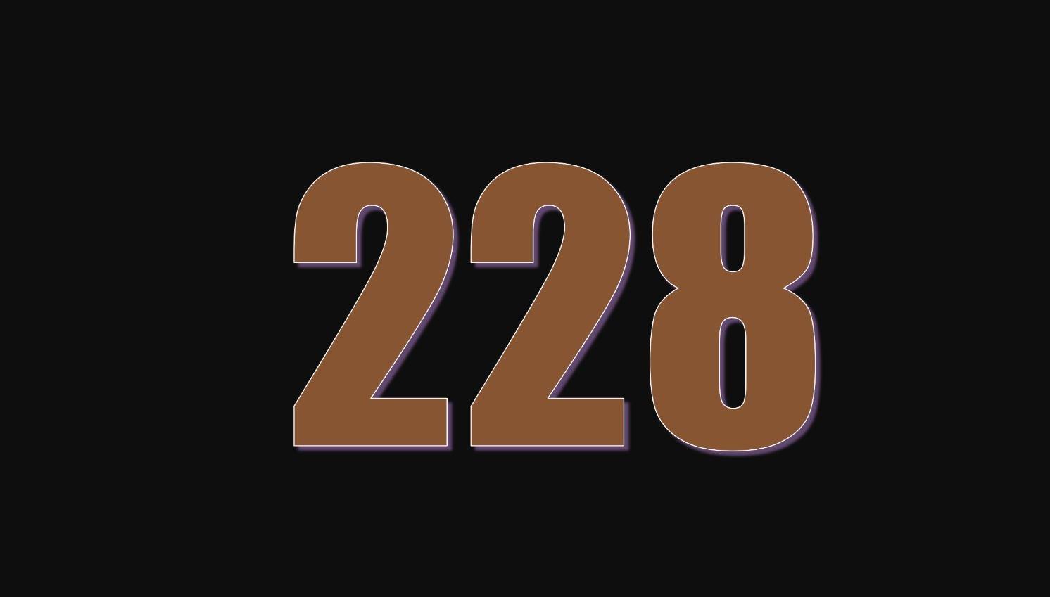 Numerologi 228
