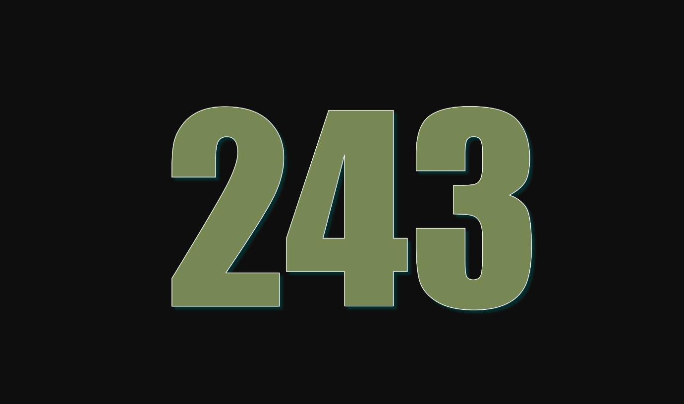 Numerologi 243