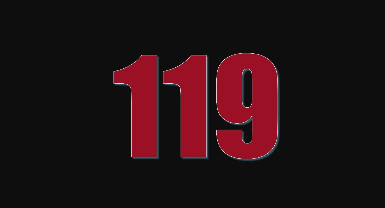 Numerologi 119