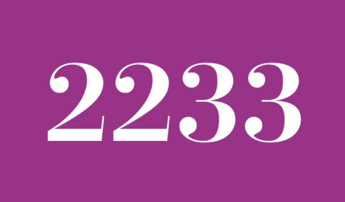 Numerologi 2233