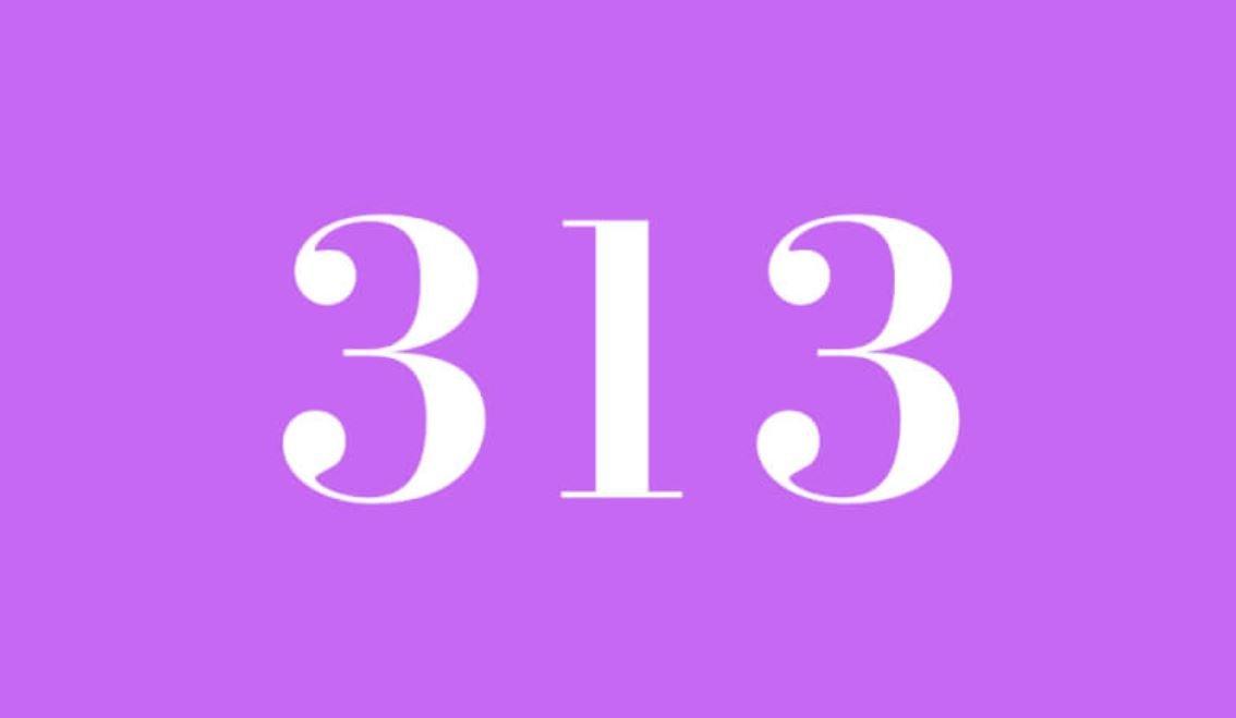 Numerologi 313