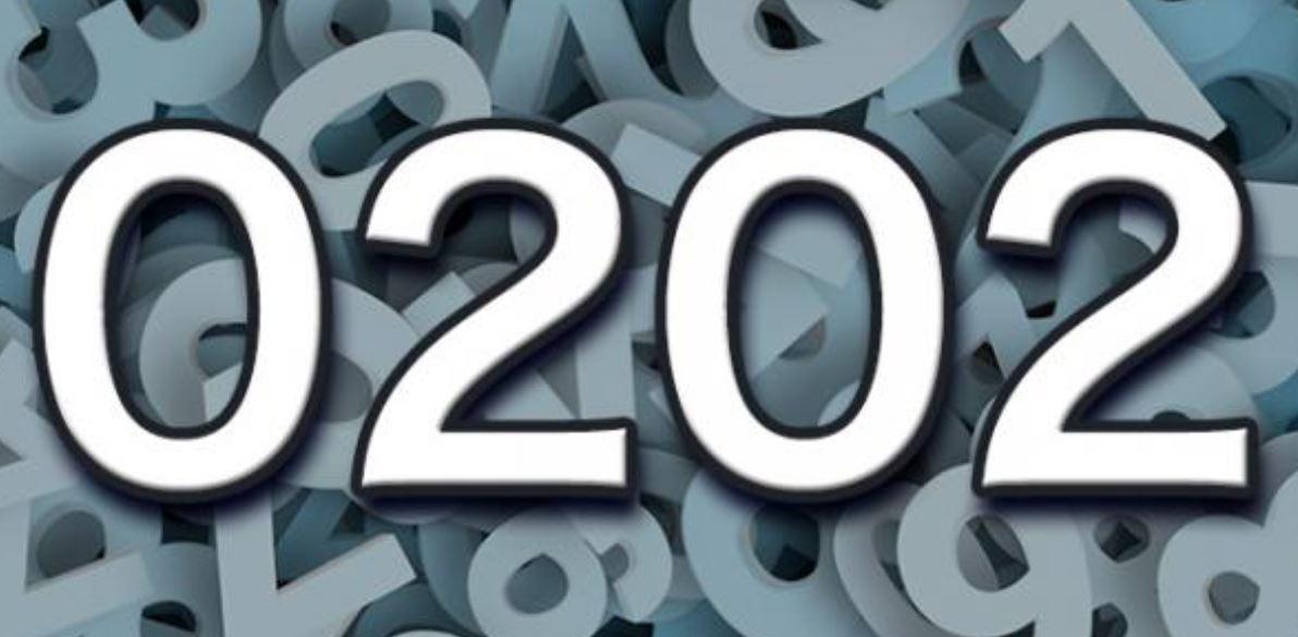 Numerologi 0202