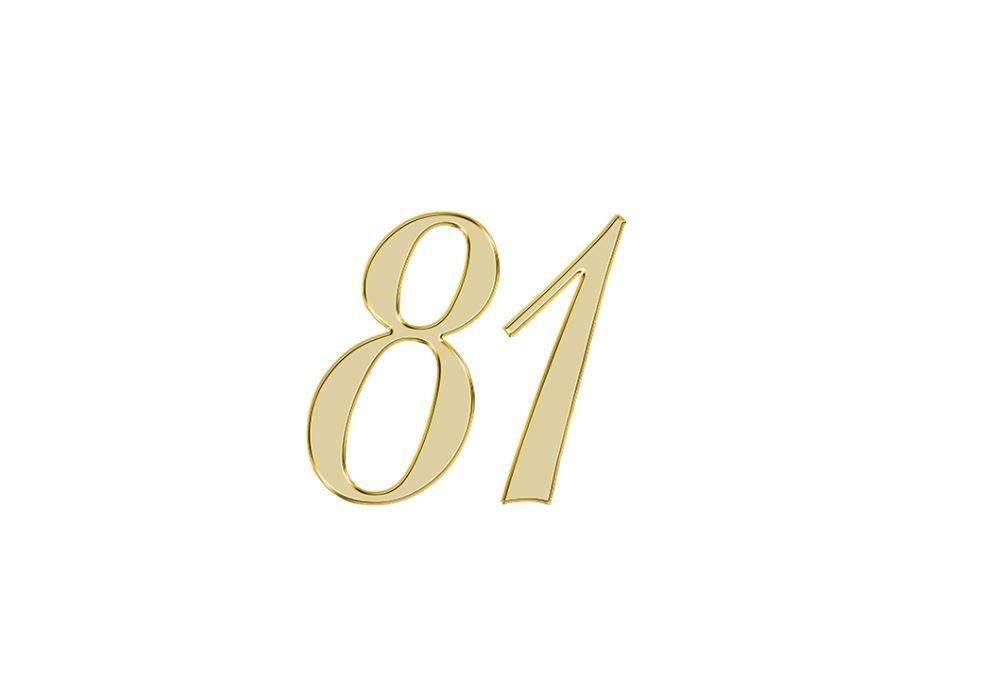 Änglanummer 81