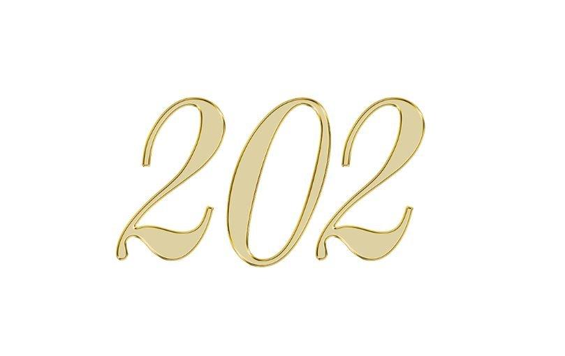 Änglanummer 202