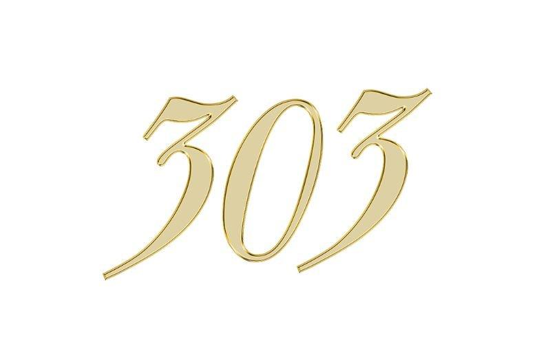Änglanummer 303