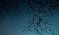 Horoskop: 19 januari stjärntecken