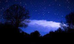 Horoskop: 4 februari stjärntecken
