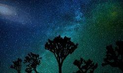 Horoskop: 8 februari stjärntecken