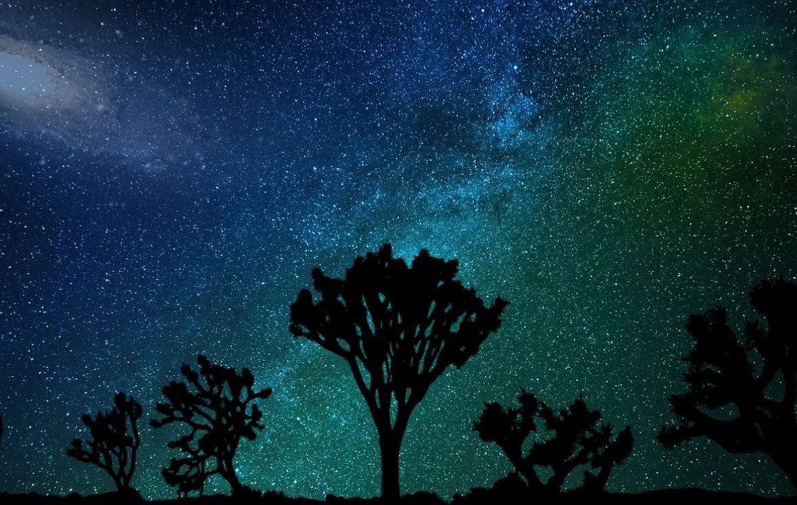 8 februari stjärntecken