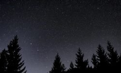 Horoskop: 11 februari stjärntecken