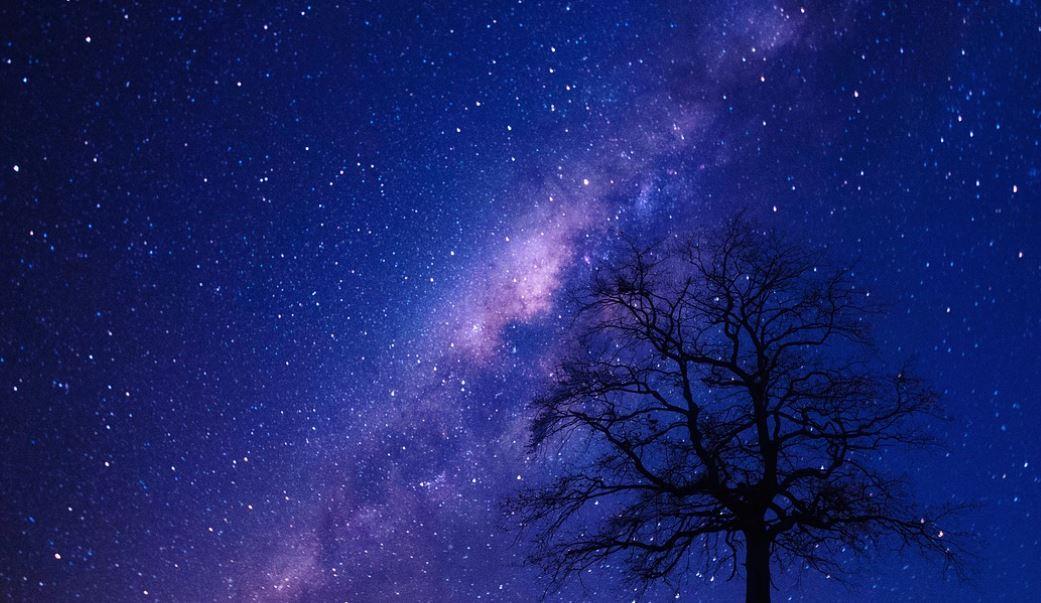 17 februari stjärntecken