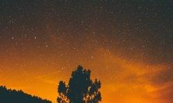 Horoskop: 28 februari stjärntecken