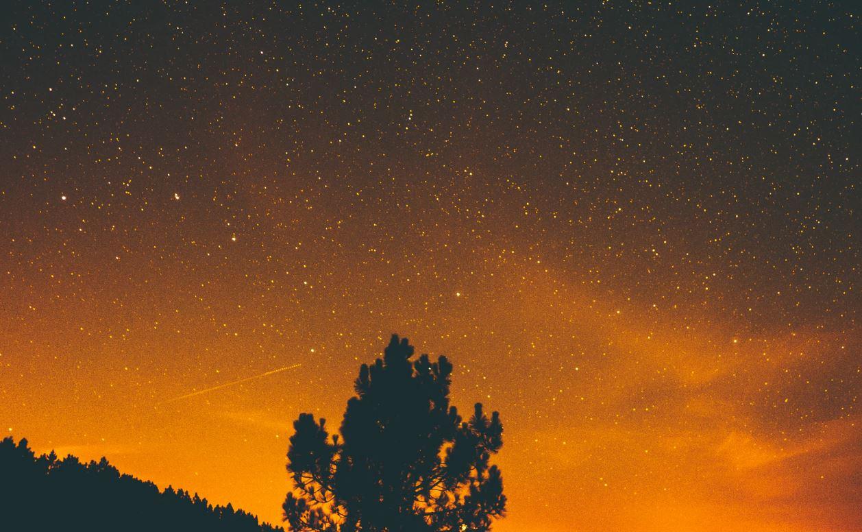 28 februari stjärntecken