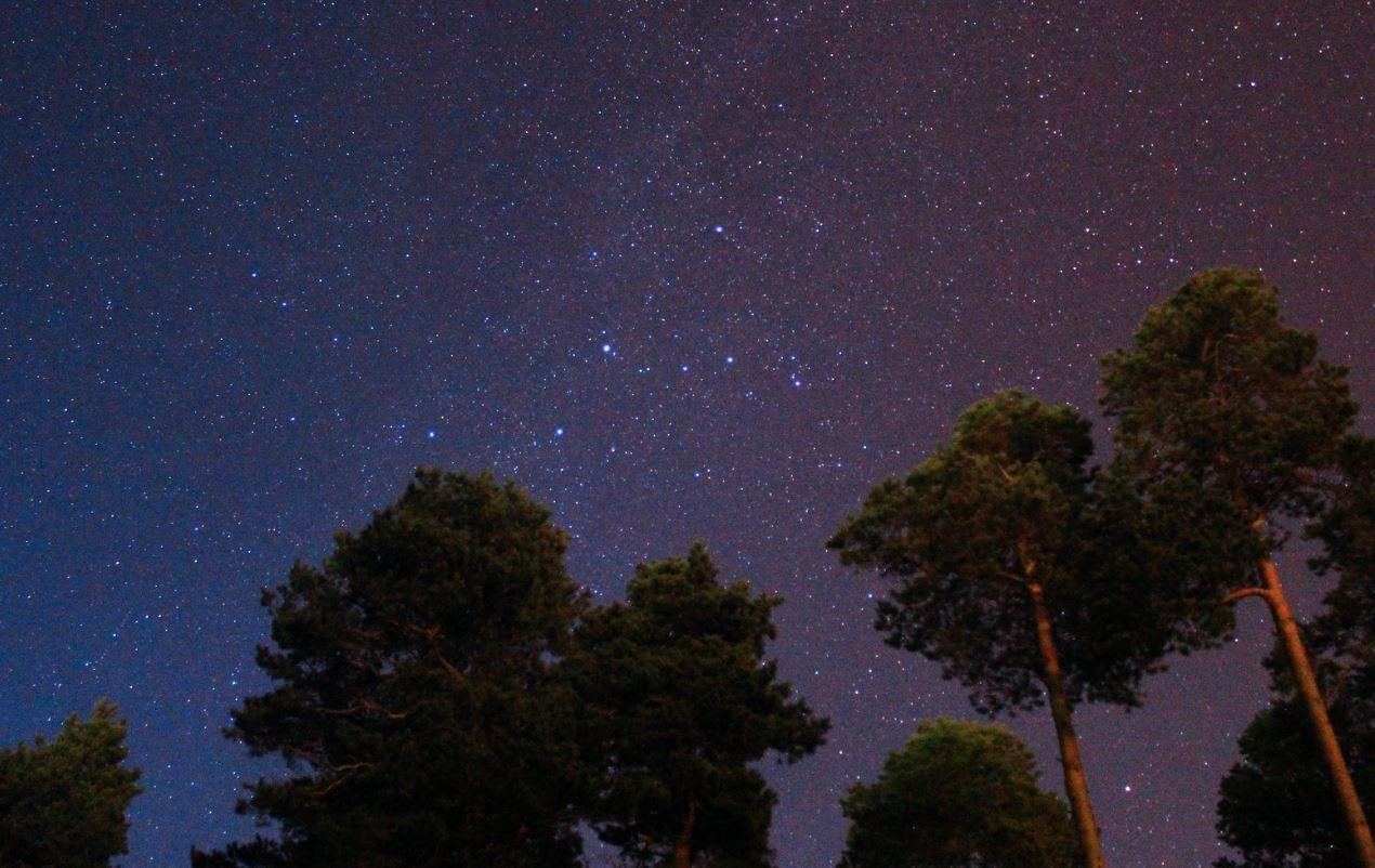 8 mars stjärntecken