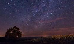 Horoskop: 14 mars stjärntecken