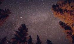 Horoskop: 1 april stjärntecken
