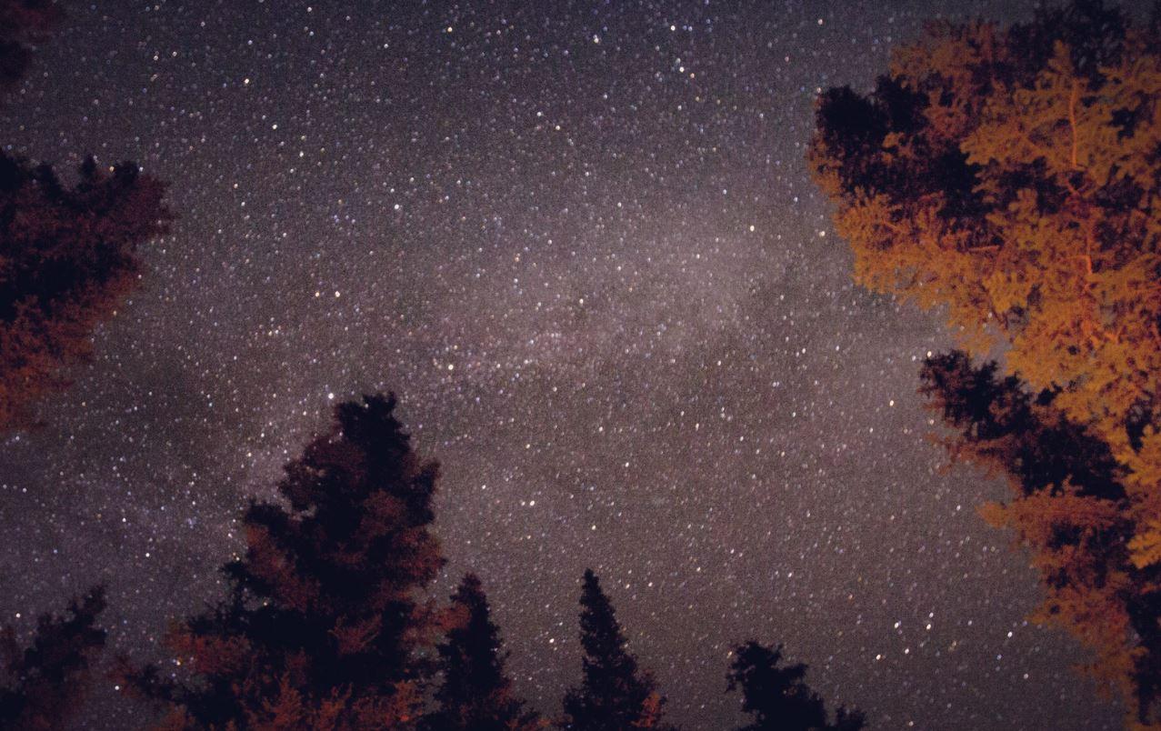 1 april stjärntecken