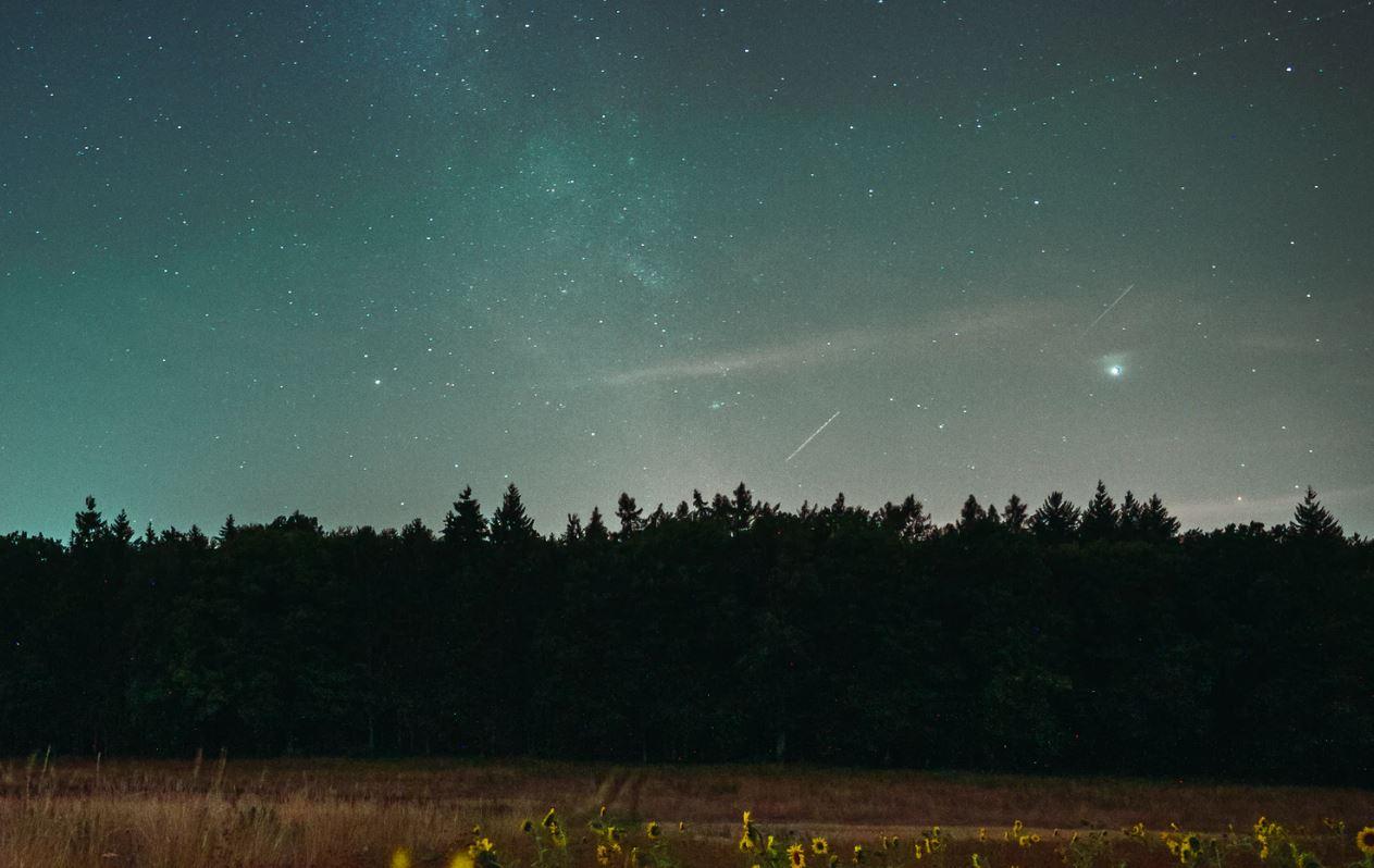 13 april stjärntecken