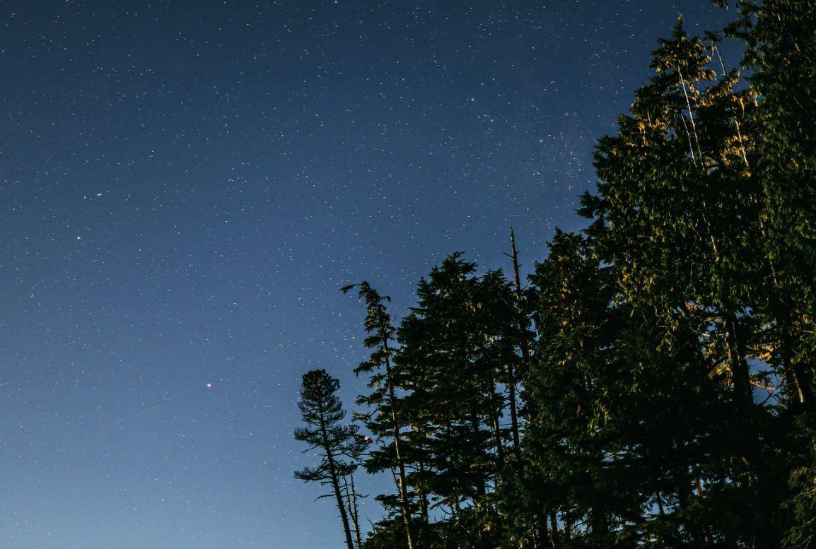 14 april stjärntecken