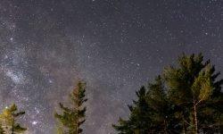 Horoskop: 20 april stjärntecken
