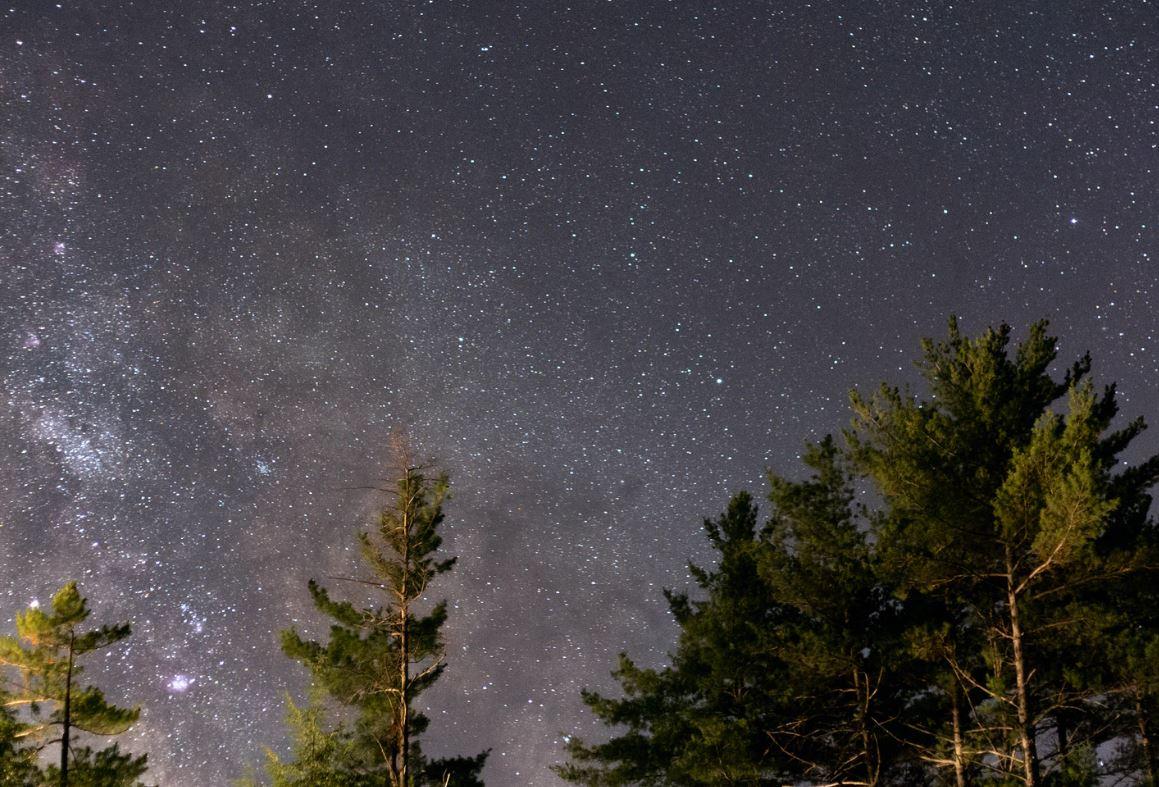 20 april stjärntecken