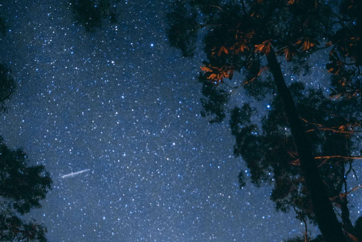 23 april stjärntecken