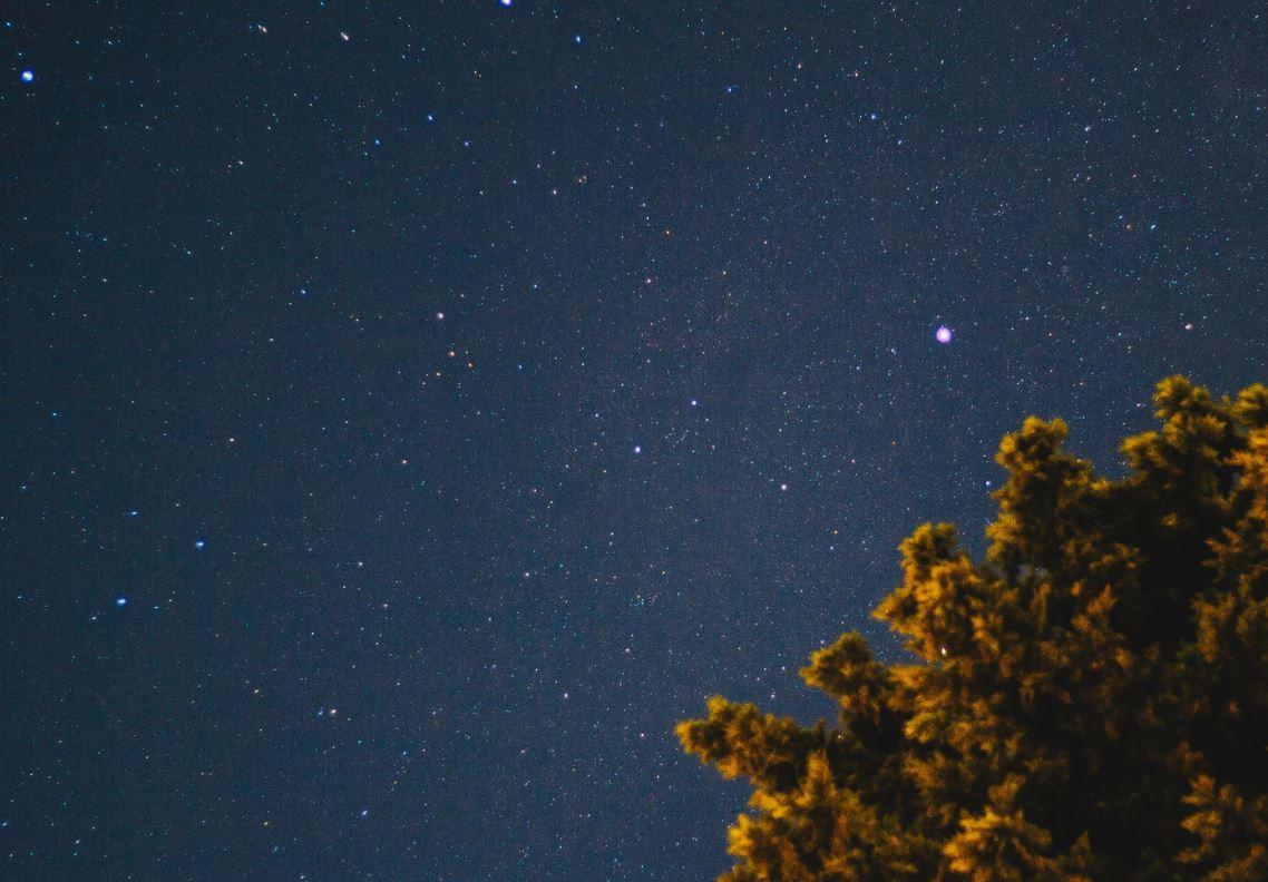 24 april stjärntecken