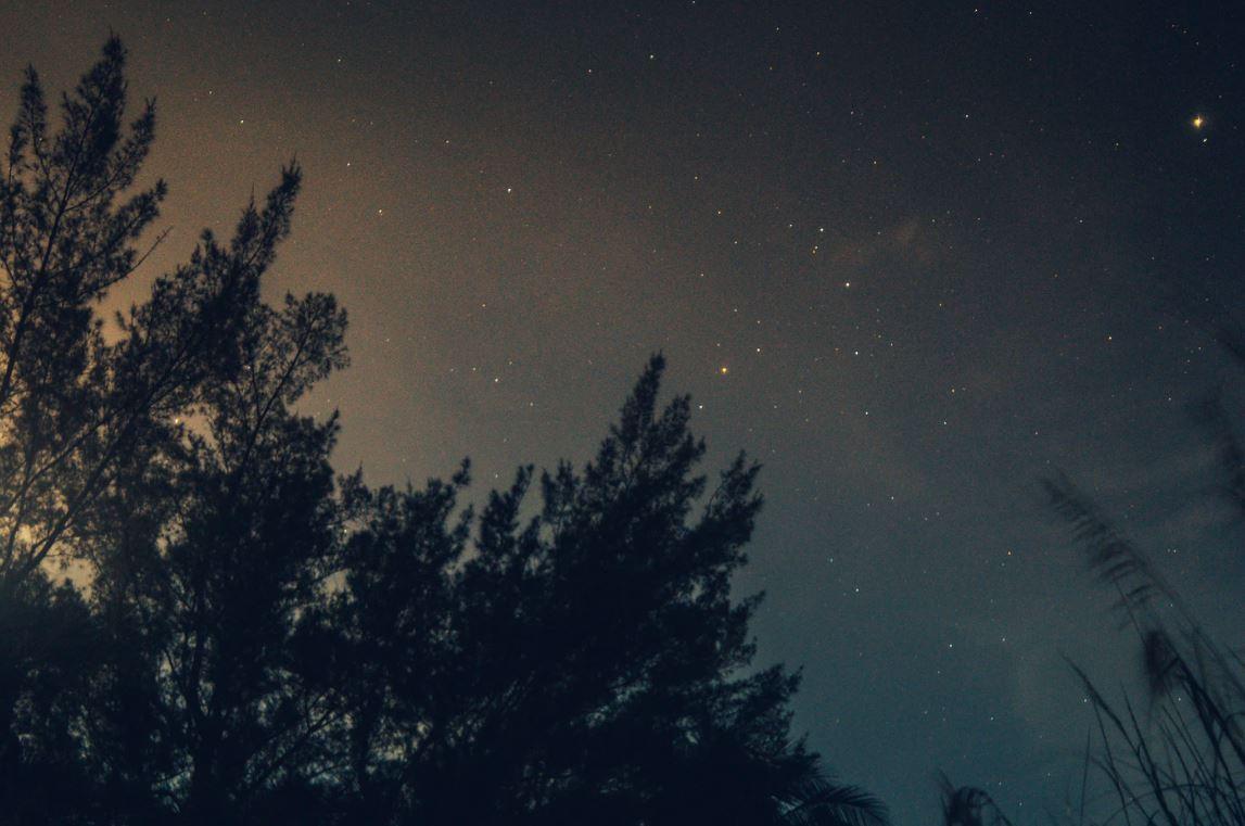 27 april stjärntecken