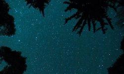 Horoskop: 4 maj stjärntecken