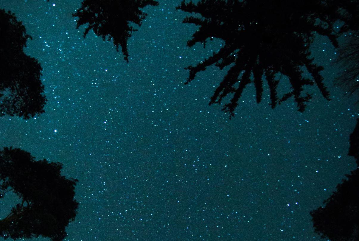 4 maj stjärntecken
