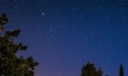 Horoskop: 11 maj stjärntecken