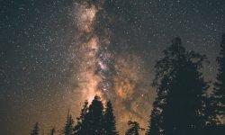 Horoskop: 12 maj stjärntecken