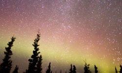 Horoskop: 16 maj stjärntecken