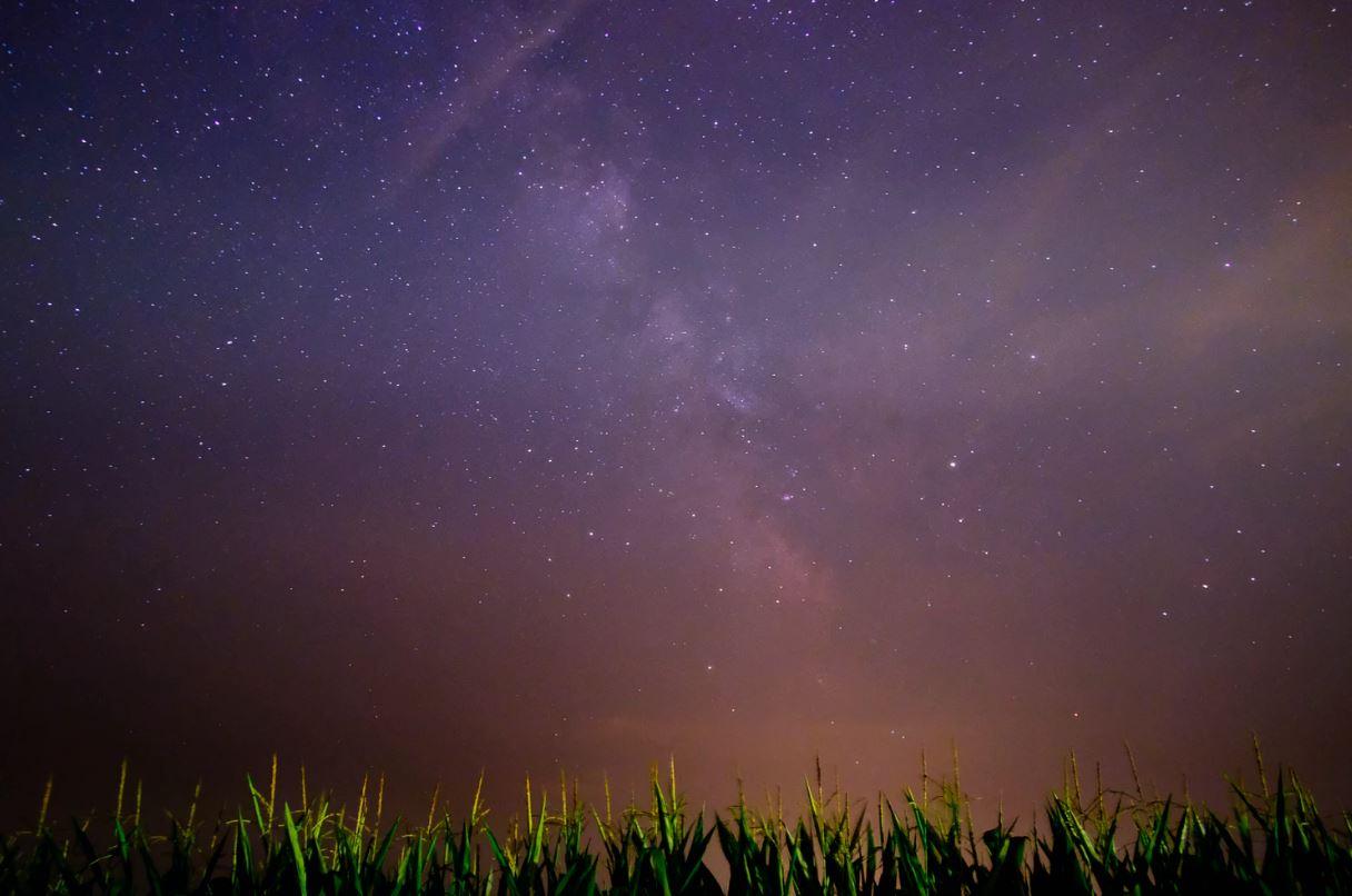 17 maj stjärntecken
