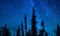 Horoskop: 20 maj stjärntecken