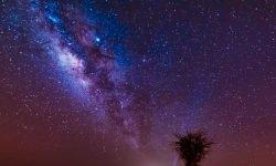 Horoskop: 30 maj stjärntecken