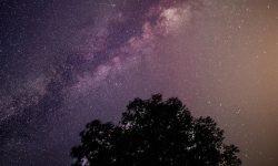 Horoskop: 5 juni stjärntecken