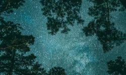 Horoskop: 17 juni stjärntecken